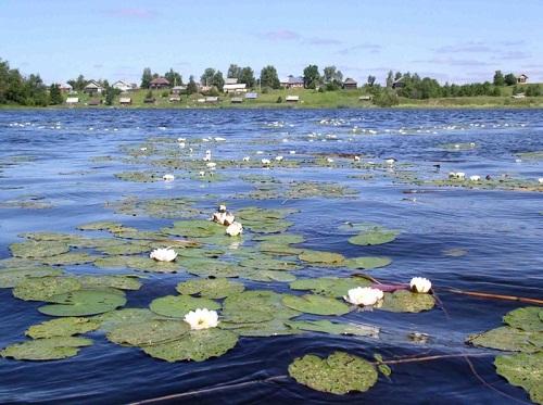 Ферапонтово на берегу озера