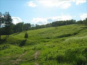 Гора Цыпина - самая выкокая точка рельефа на территории парка
