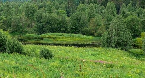 Рельеф парка Русский Север