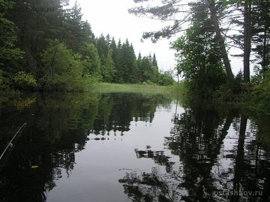 Никольское озеро, экологическая обстановка