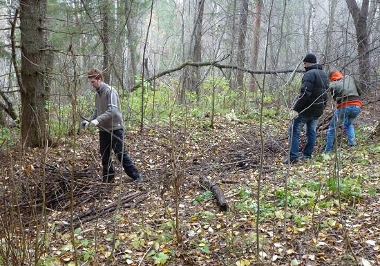 Деятельность волонтеров в России