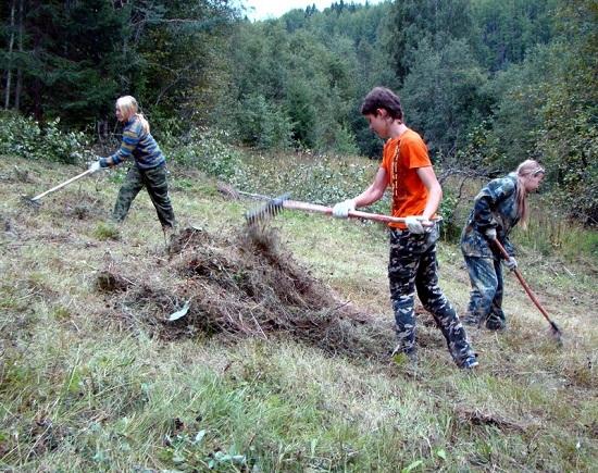 Волонтеры в национальном парке Русский Север