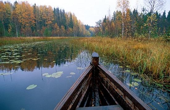 День национальных парков и заповедников