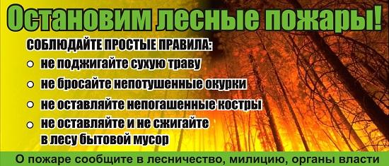 Берегите лес от пожара плакат