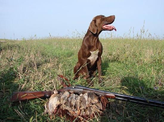 Ограничение весенней охоты в Национальном парке