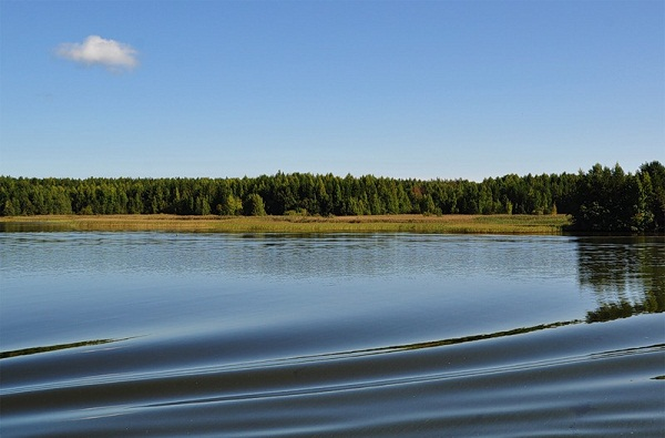 Северо-Двинская водная система. Вид с теплохода на берег