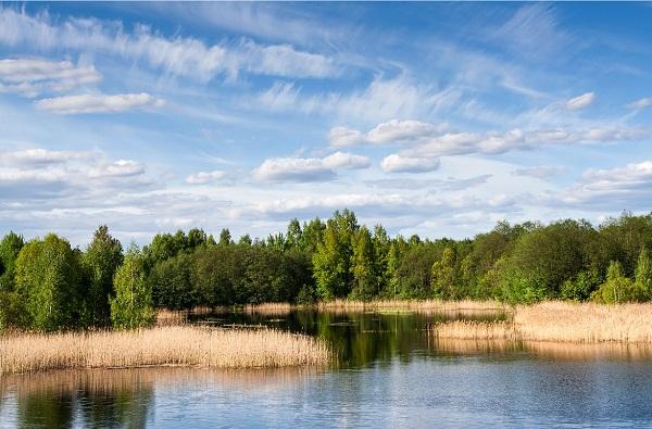 Река Порозовица. Северо-Двинский канал (Фото М.Осипов)