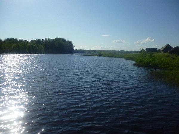 Озеро Палшемское в Кирилловском районе Вологодской области