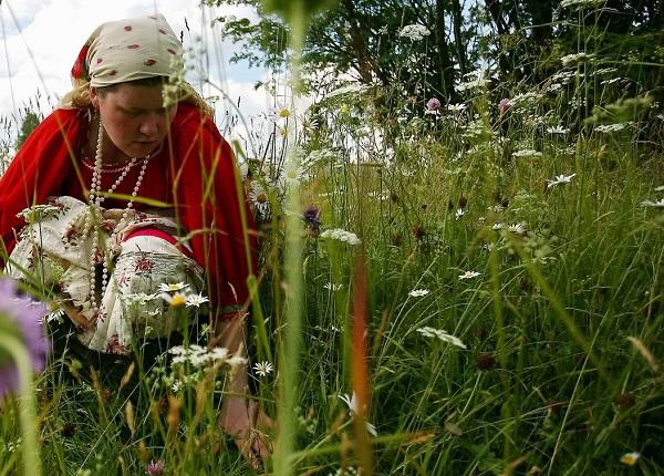 Экологический туризм по Русскому Северу