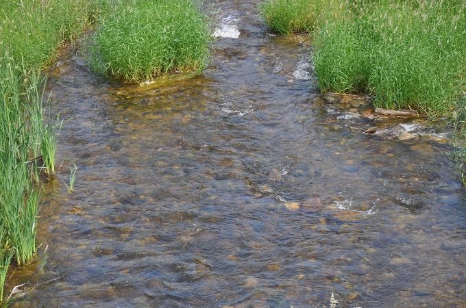 Река Паска